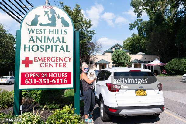 Customer arrives at the curbside pet drop off at West Hills Animal Hospital as the city continues Phase 4 of re-opening following restrictions...