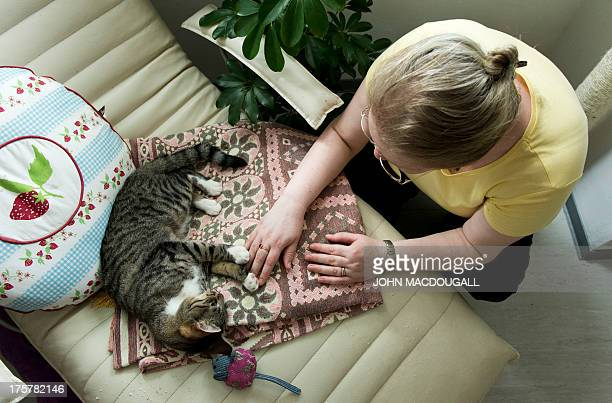 A customer at Pee Pee's Kazten Kafee pets one of the cafe's two cats in Berlin on August 8 2013 According to the owners their cafe is the first in...