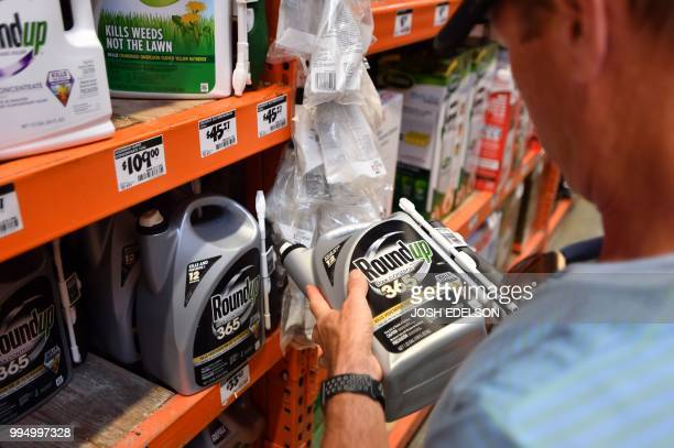 Customer Gary Harms shops for Roundup products at a store in San Rafael California on July 2018 A lawyer for a California groundskeeper dying of...