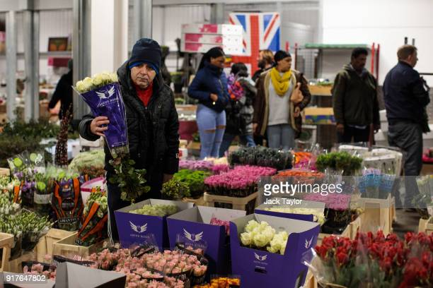 A customer inspects a bunch of roses at New Covent Garden Flower Market ahead of Valentine's Day on February 13 2018 in London England New Covent...