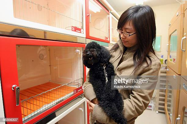 A customer inspects rooms at a large pet hotel located at Narita International Airport on December 7 2005 in Narita Japan The Pet Inn Royal with a...