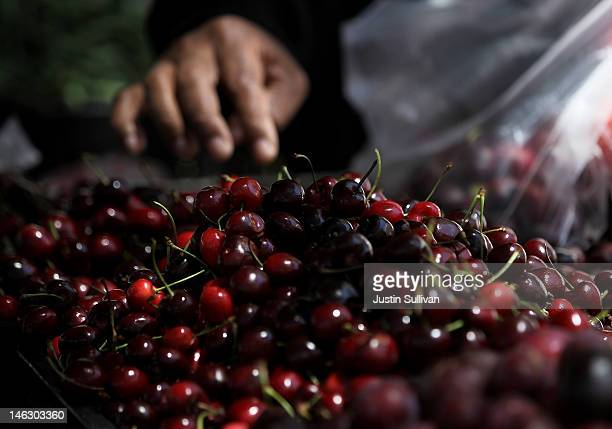 A customer shops for cherries at a farmers market on June 13 2012 in San Francisco California The US Senate has started to debate the new fiveyear...