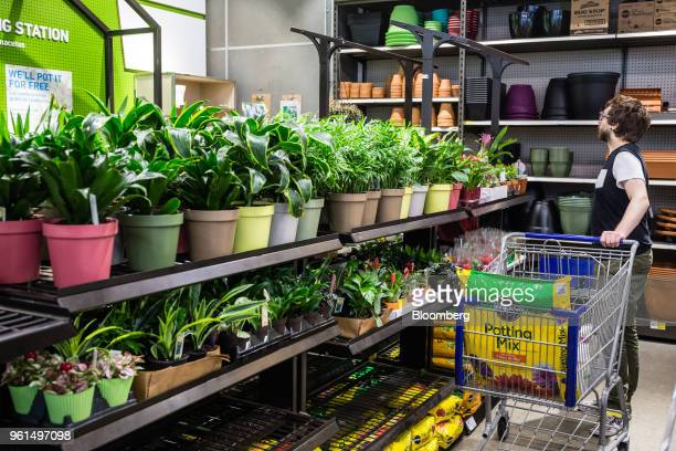 A customer views plants on display for sale at a Lowe's Cos store in New York US on Tuesday May 22 2018 Lowe's Cos is scheduled to release earnings...
