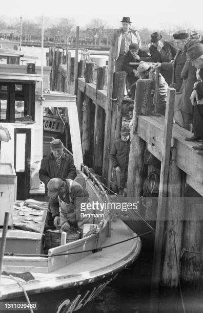 Customers gather on the dockside to purchase fish on the waterfront of the Sheepshead Bay neighbourhood in the Brooklyn borough of New York City, New...