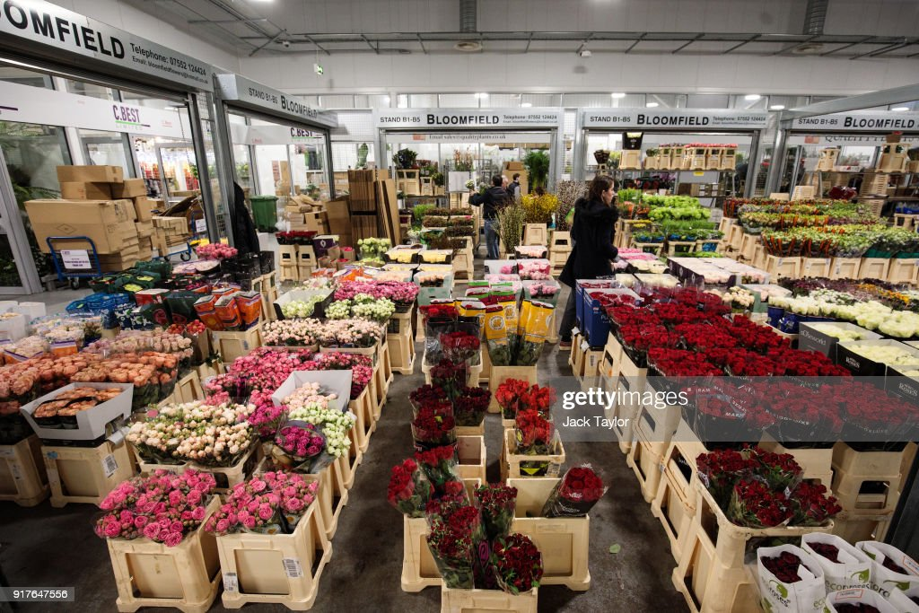 Customers look through flowers on display at New Covent Garden Flower Market ahead of Valentine's Day on February 13, 2018 in London, England. New Covent Garden market is the largest wholesale fruit, vegetable, and flower market in the United Kingdom, supplying 75% of florists in London.