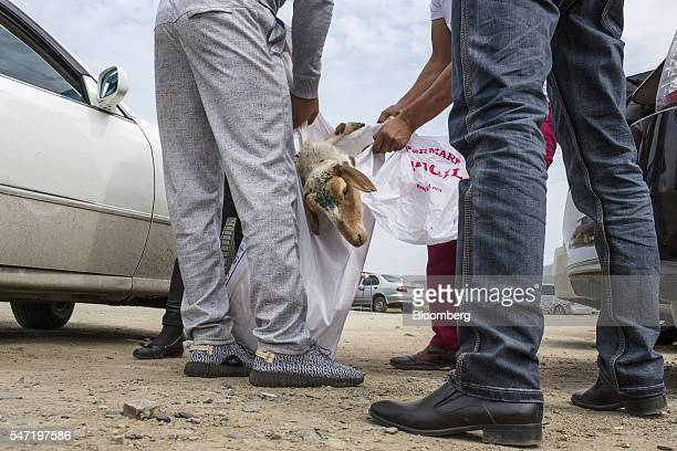 Customers prepare to load a slaughtered sheep into a car at a livestock market on the outskirts of Ulaanbaatar Mongolia on Wednesday July 13 2016 The...