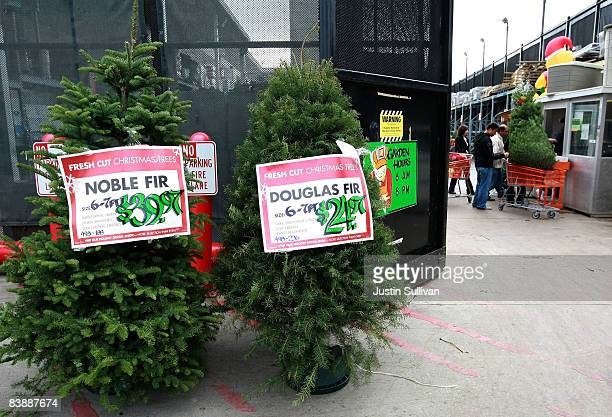 customers purchase christmas trees at a home depot store december 2 2008 in colma california home