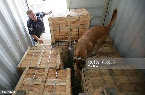 US Customs and Border Protection canine officer Steve Fischer identifies a search area for illegal drugs inside a cargo container for his dog Hex in...