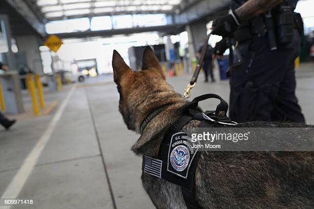 S Customs and Border Protection K9 unit waits to check vehicles crossing into the United States from Mexico on September 23 2016 in San Ysidro...