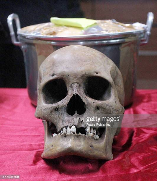 Customs and Excise officers display human skulls that are believed to originate from the Dayak tribe at Seokarno Hatta Airport on June 17, 2015 in...