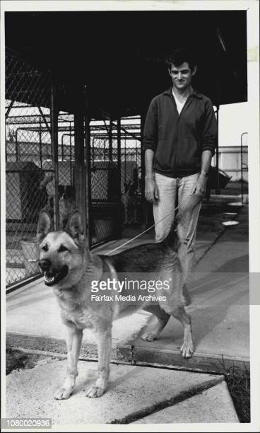 Customs dog handlers at the Airport are in the midst of industrial action Kennell hand Ross Garlick and Customs dog 'Pal' in the Customs kennell at...