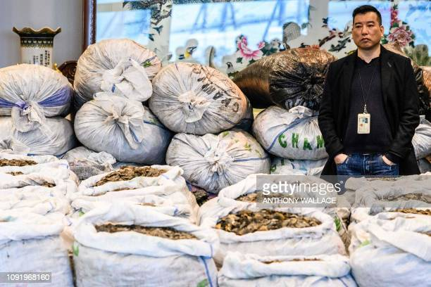 A customs officer stands in front of sacks of seized endangered pangolin scales during a press conference at the Kwai Chung Customhouse Cargo...