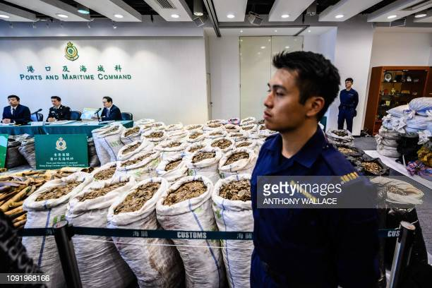 A customs officer stands in front of sacks of seized endangered pangolin scales displayed next to ivory elephant tusks during a press conference at...