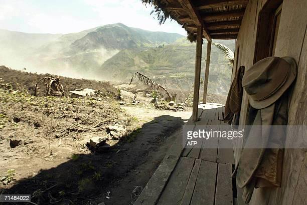 Ceniza volcanica cae sobre el poblado de Cusua el 19 de julio de 2006 La actividad del volcan Tungurahua ha descendido a pocas unas explosiones de...