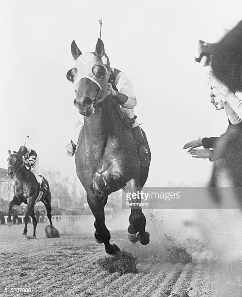 Cut in FrontTo Stay Pimlico Maryland Pounding past the grandstand shortly after the start Seabiscuit leads War Admiral by two lengths in their match...