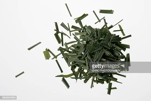 cut lemon grass - erva cidreira imagens e fotografias de stock