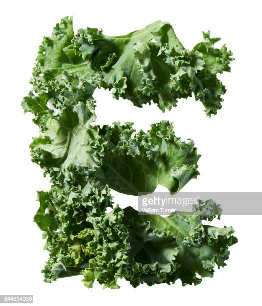 A cut out food image of kale