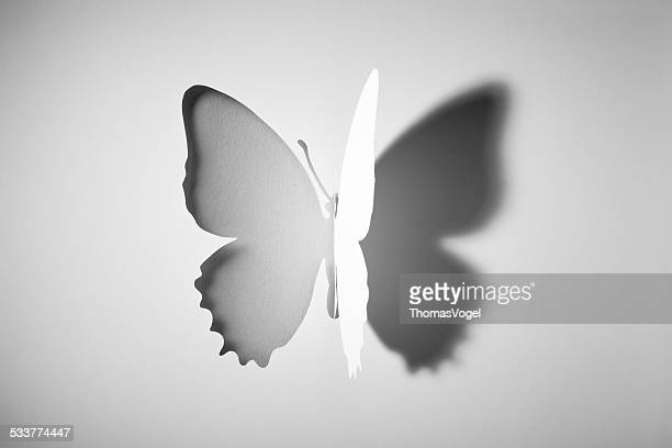 cut out paper buttlerfly - shadow stock pictures, royalty-free photos & images