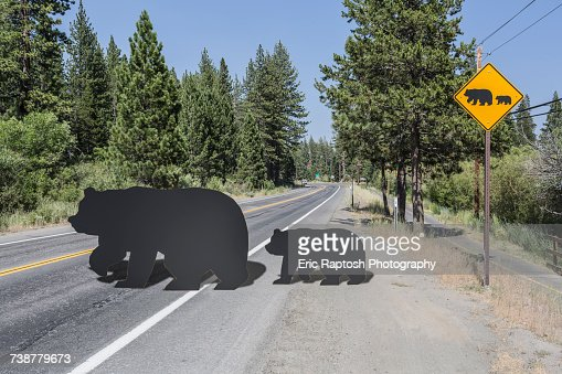Cut outs of bear and cub crossing street near caution sign
