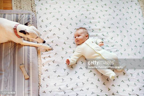 Cute baby and dog together