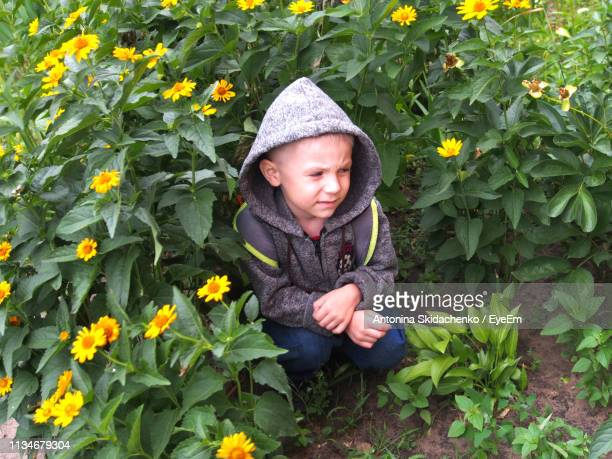 Cute Boy Crouching Against Yellow Flowering Plants