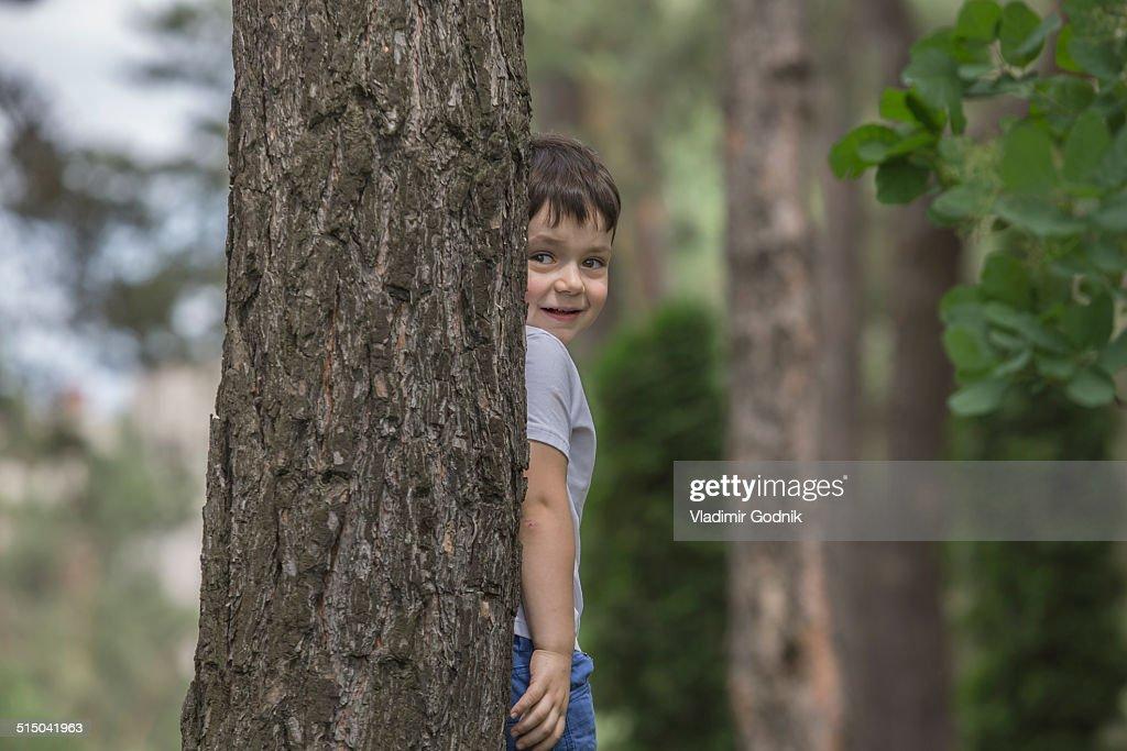 Cute boy hiding behind tree trunk in park : Stock Photo