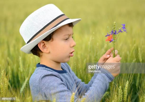 Cute boy holding flowers in wheat field.