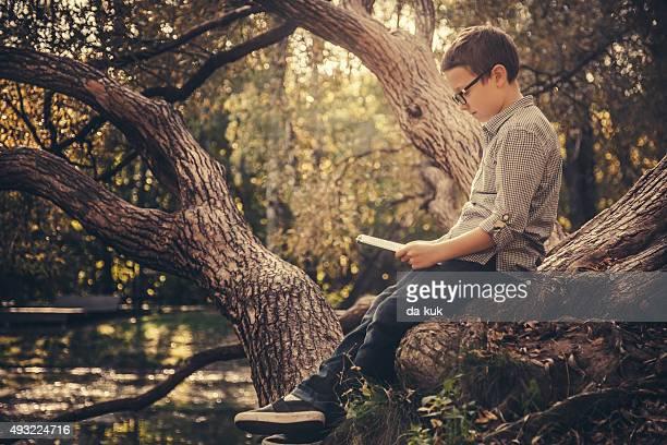 Mignon petit garçon lisant un livre dans le parc au coucher du soleil
