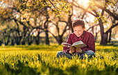cute boy reading book sitting park