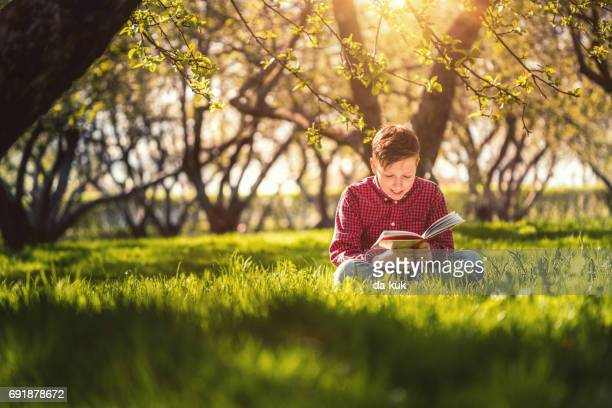 Cute boy reading a book sitting in the park at sunset