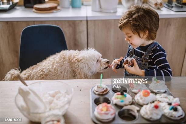cute boy sharing his cookie with his pet - tierisches verhalten stock-fotos und bilder
