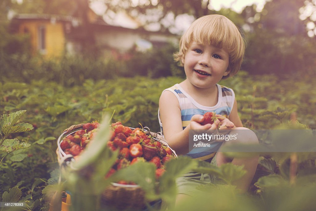 Retro-style photo of a happy little boy with strawberry