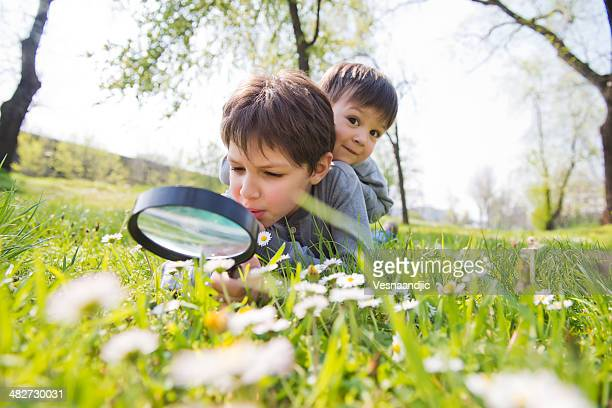 Cute brothers using magnifier