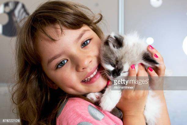 cute child holding her kitten. - persian girl stock photos and pictures