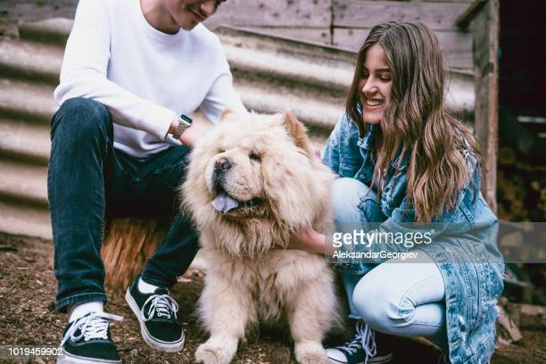 cute couple playing with fluffy puppy - chow dog stock pictures, royalty-free photos & images