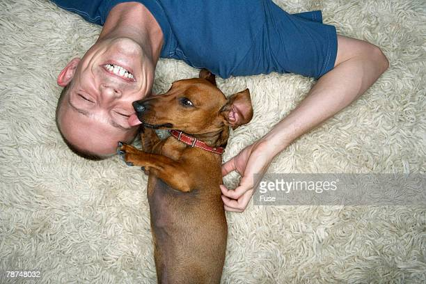 Cute Dachshund Liking Smiling Young Man on Shag Carpet
