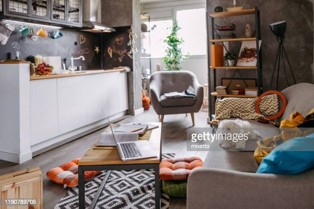 cute dog looking at laptop on wooden table - small apartment stock pictures, royalty-free photos & images