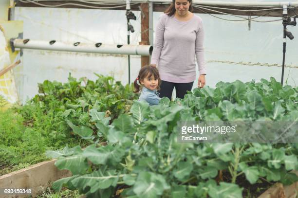 Cute ethnic mom and her young daughter hang out in greenhouse
