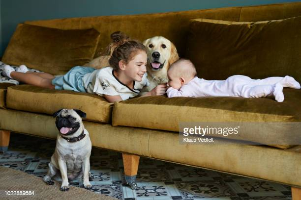 cute girl and new born baby lying on sofa with dogs - self improvement stock pictures, royalty-free photos & images