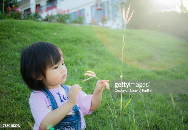 Cute Girl Holding Plant On Grassy Field