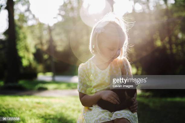 Cute girl petting kitten while sitting at park during sunny day
