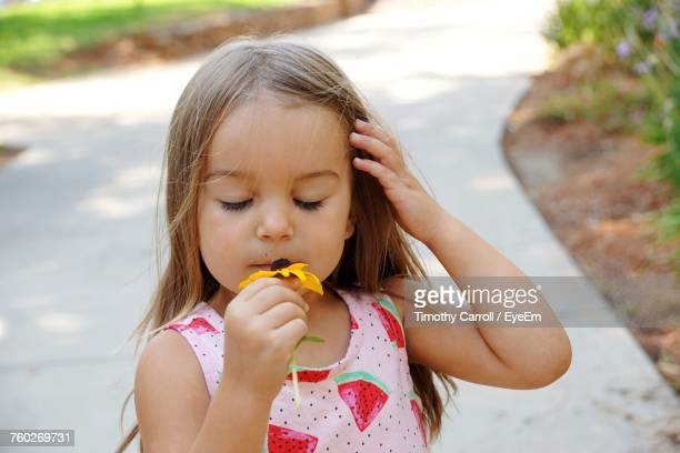 Cute Girl With Eyes Closed Smelling Coneflower At Park