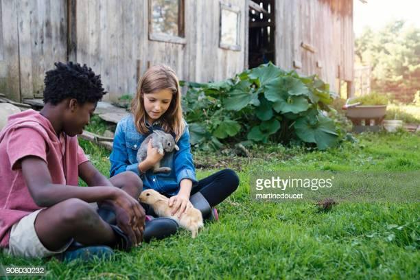 """cute kids cuddling baby rabbits outdoors in spring. - """"martine doucet"""" or martinedoucet stock pictures, royalty-free photos & images"""