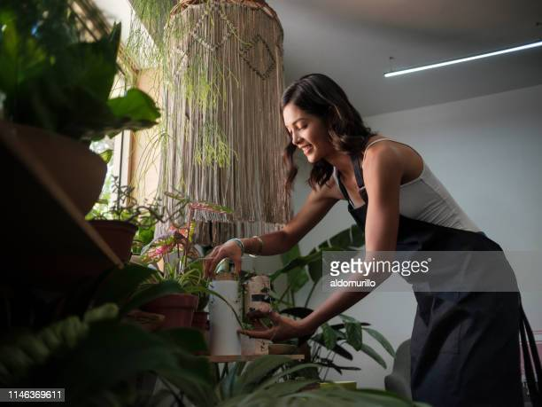 a cute latin female business owner working in shop - medium shot stock pictures, royalty-free photos & images