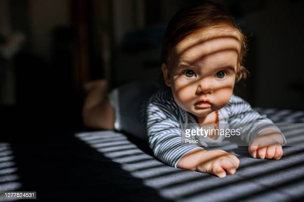 cute little baby boy laying on stomach - one baby boy only stock pictures, royalty-free photos & images