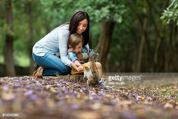 cute little boy and mother feeding a squirrel at park - scoiattolo foto e immagini stock