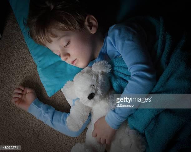 Cute Little Boy Asleep with His Teddybear