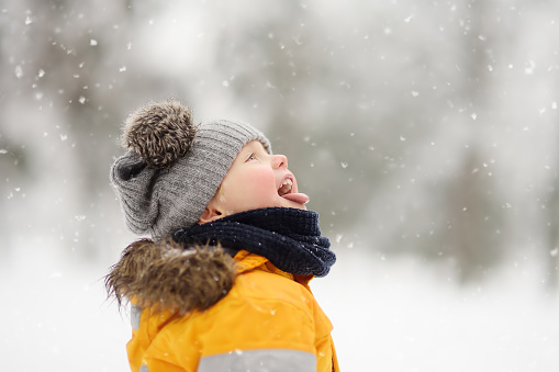 Cute little boy catching snowflakes with her tongue in beautiful winter park 1054784762