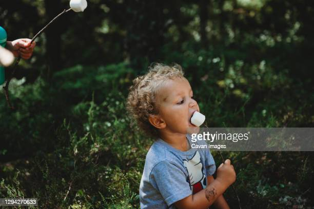 cute little boy eating marshmallows in stick getting messy at forest - 不完全な美しさ ストックフォトと画像