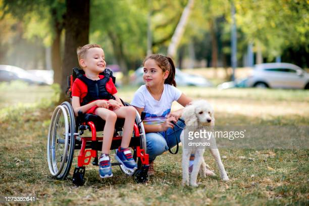 cute little boy in wheelchair playing with his sister and dog outside - wheelchair stock pictures, royalty-free photos & images